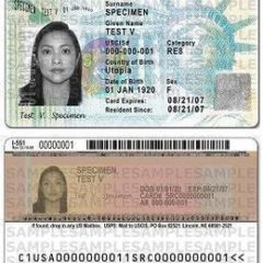 example of a green card
